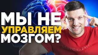 Мы - это не наш мозг? Что из себя представляет мозг человека на самом деле?