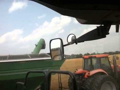 Wheat harvest 2014 - Unloading on the move