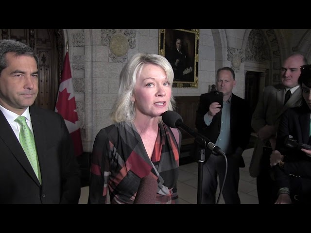 Conservative MP Candice Bergen is calling for more action from the government against a self-described terror recruit reportedly living in Toronto. The Canadian appeared on a recent New York Times podcast speaking about his actions as a Daesh (also known as the Islamic State or ISIS) militant. (The Canadian Press)