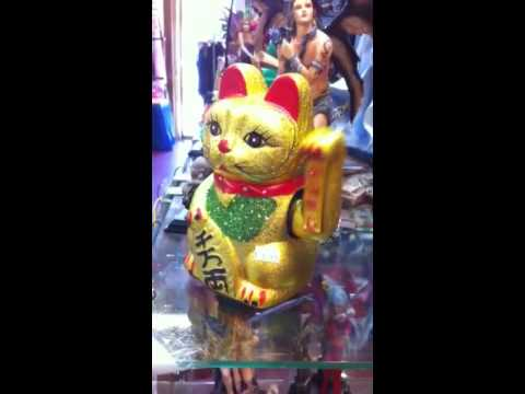 Lucky cat dance