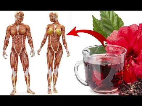 Flor de Jamaica: Conoce como se prepara, sus beneficios y para qu� sirve en tu salud