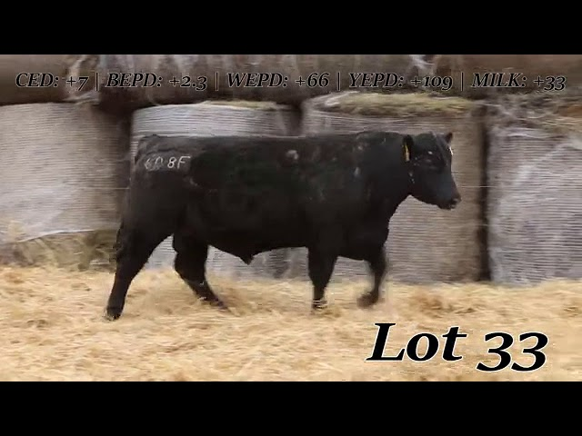 Sweiger Farms Lot  33