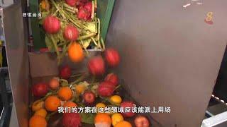 前线追踪   丑食物新商机 年轻人用科技减少食物浪费 - YouTube