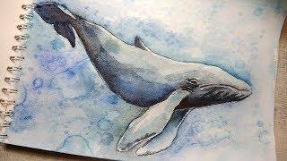 Как нарисовать кита акварелью? /  How to draw a whale in watercolor?