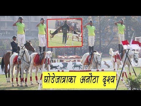 घोडेजात्रामा नेपाली सेनाले देखायो युद्ध कौशल  | Ghode Jatra at Tudikhel Kathmandu