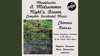 Incidental Music for A Midsummer Night's Dream, Op. 63: V. Intermezzo