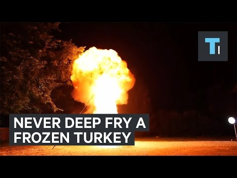 Michael J. - Please DON'T Deep Fry a Frozen Turkey or your Thanksgiving Could Kill You!