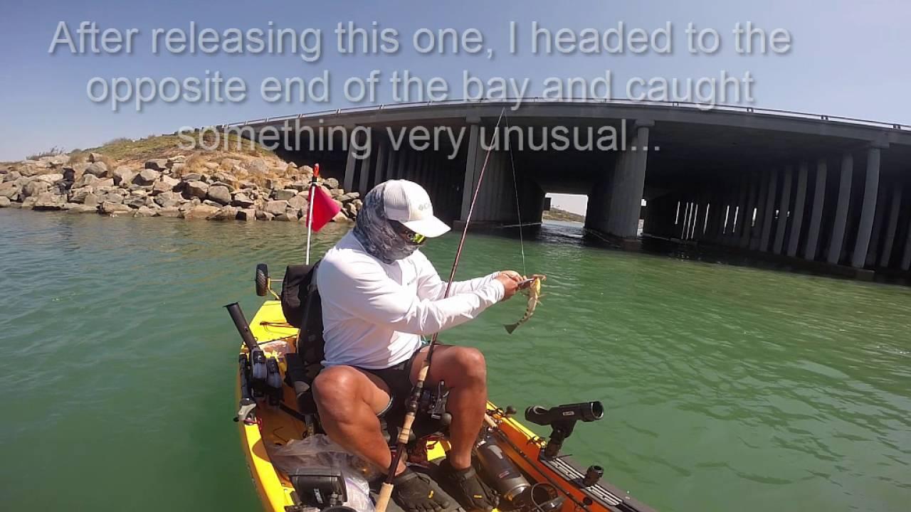 Salt Water Fishing Carlsbad Lagoon Youtube
