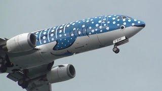 """""""Whale shark flying"""" Japan Transocean Air / JTA / NU Boeing 737-4Q3..."""