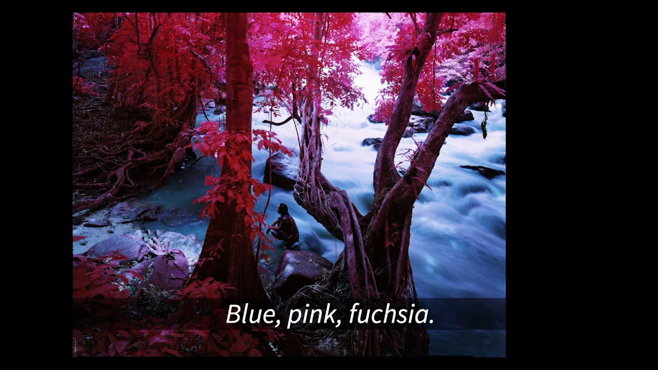 A MOMENT OUT OF TIME – RICHARD MOSSE