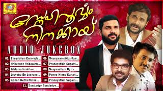 സ്നേഹപൂർവ്വം നിനക്കായ്   Ramesh Narayanan, Najeem Arshad, Shafi Kollam, Sai Balan   Malayalam Album