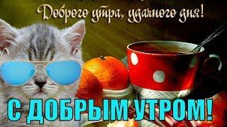 Доброе утро! Красивые пожелания с добрым утром прекрасным днем и хорошего настроения !