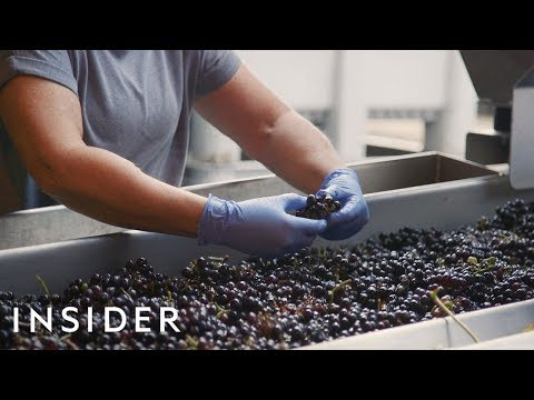 How-Wine-Is-Made