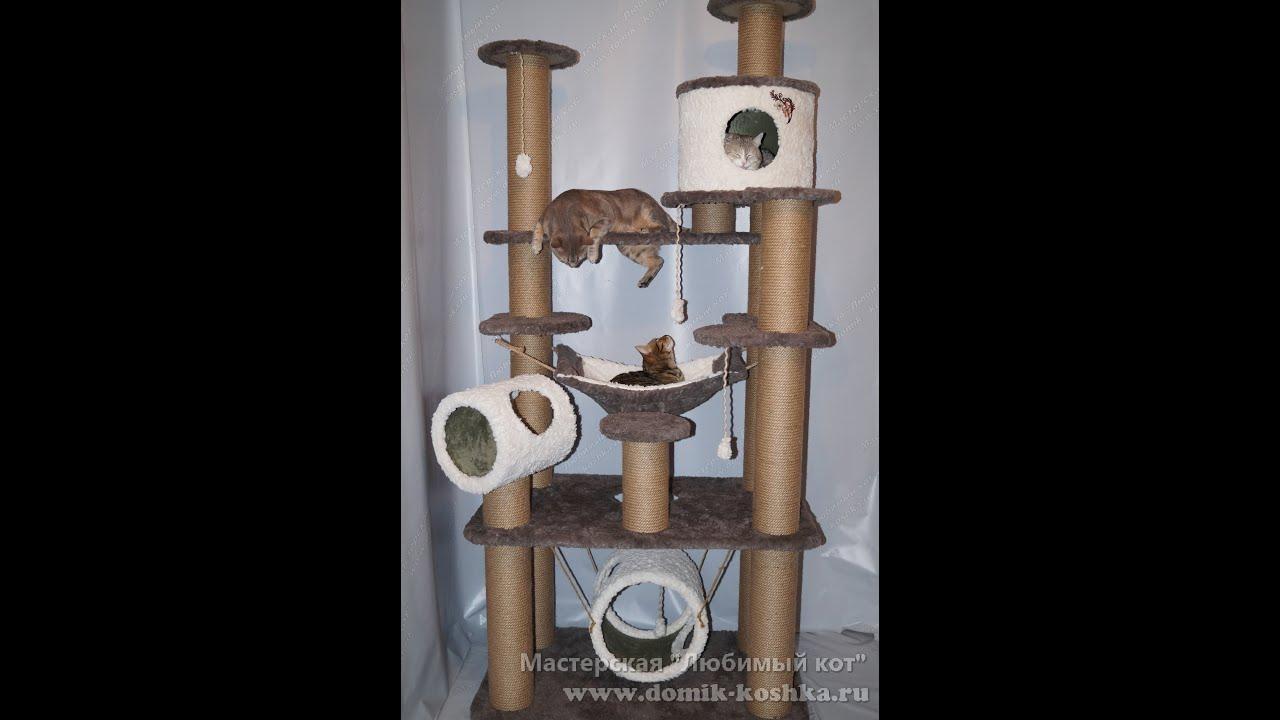Комплексы для котят своими руками фото