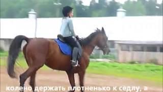 Обучение верховой езде. Конный спорт. Киров