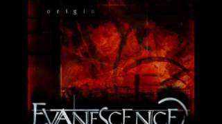 Evanescence - Field of Innocence