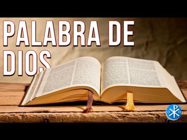 Palabra de Dios   Perseverancia - P. Gustavo Lombardo