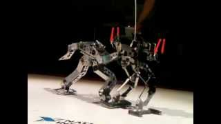 ROBO-ONE 20 (3rd Stage) Gargoil-mini vs SimpleFighter