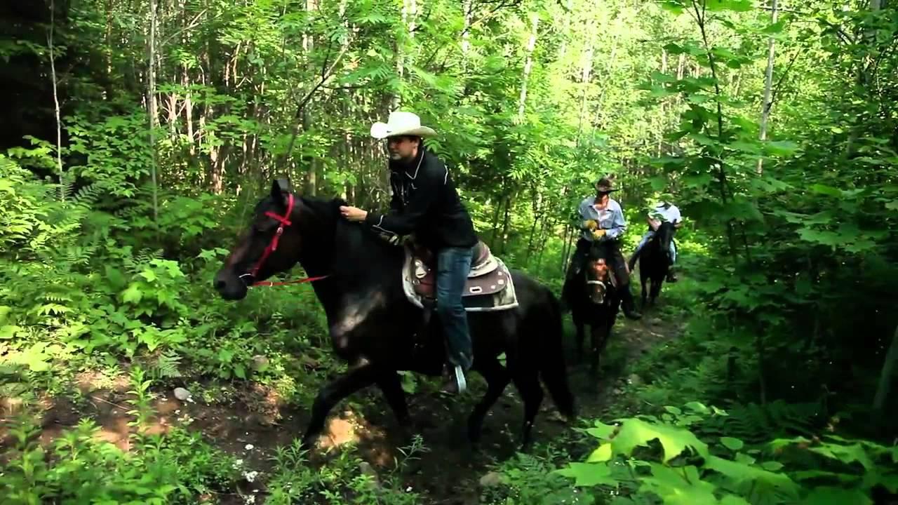Captiva Farms Horseback Riding Ottawa / Gatineau Équitation