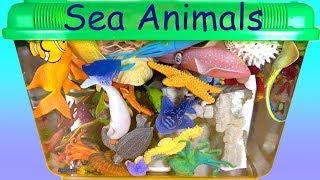 Playset with Sea Animals Aquarium Fun Play Toys for Kids Learn Wild Animal Names