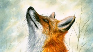 Acrylic Speed-painting | Realistic Red Fox Drawing