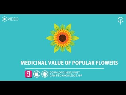 MEDICINAL VALUE OF POPULAR FLOWERS