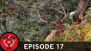 3000 Vertical Feet and a 25-yard Chip Shot (Destination Elk V2: Episode 17)