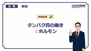 【高校生物】 細胞26 ホルモン(11分)