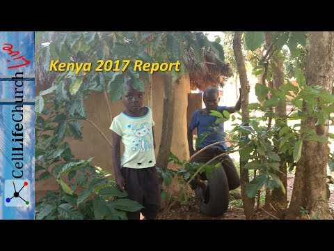 Kenya 2017 Report