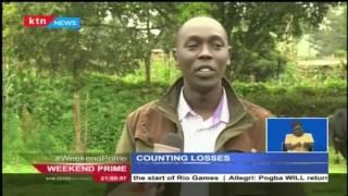 Farmers count loses as strange maize disease hits plantations