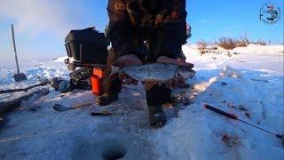 Окончательное ЗАКРЫТИЕ СЕЗОНА в Якутии 2019 года Yakutia