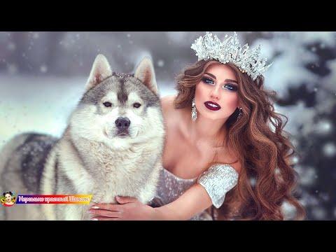 Величайшие сборники песен 2019 💖 Совсем новые русские песни Шансона 2019 💖 Зажигательные песни !!!