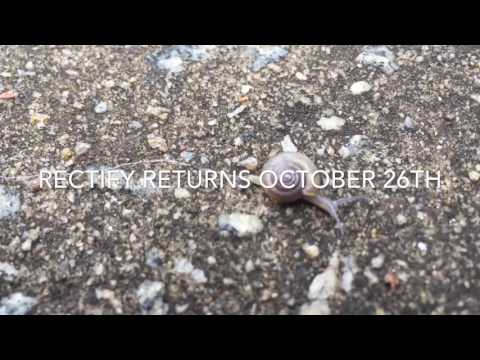 Rectify returns October 26th