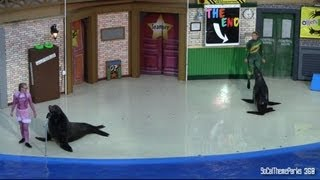 [HD] Sea Lions Tonite Comedy Show - Spoofs - SeaWorld San Diego