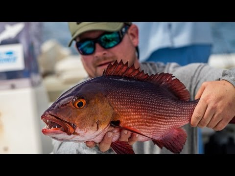 Costa + GEOBASS: Season 2 | Red Bass in Christmas Island