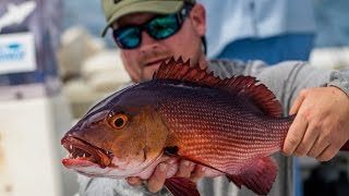 GEOBASS Season 2: Red Bass in Christmas Island by Costa Sunglasses