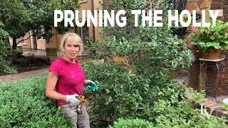 How to Prune Holly
