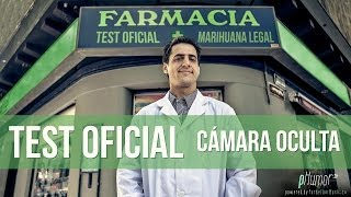 TEST OFICIAL - Marihuana Legal en Uruguay - (Cámara Oculta) (PRANK)
