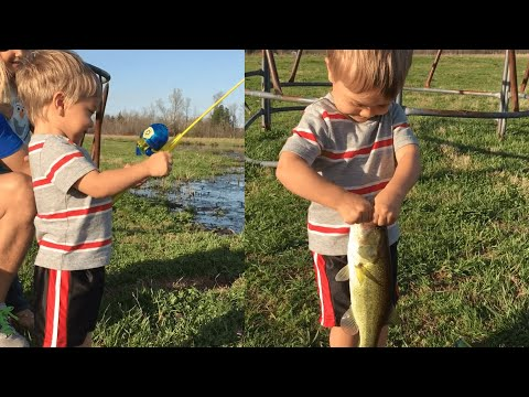 Thumbnail: Little Boy Catches Fish with Toy Rod