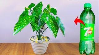 প্লাস্টিক বোতল দিয়ে বাহারি গাছ || Plastic bottle artificial plant for home decoration