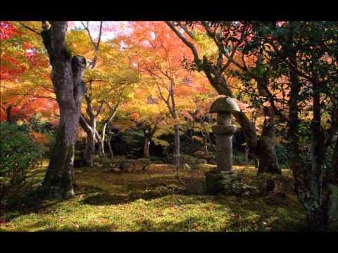 Radio Dojo: Kyoto Garden - Miyagi