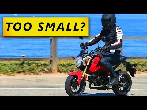Should You Ride A Small CC Bike?  (YES)
