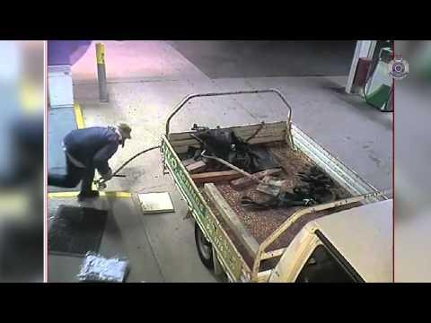 VIDEO: Mirá al ladrón de cajeros automáticos más torpe del mundo