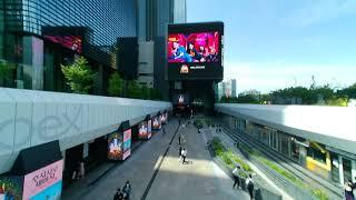 코엑스광장 - 일상