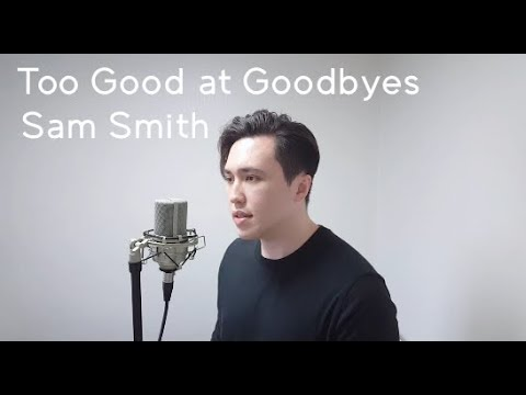 Sam Smith - Too Good at Goodbyes (Andrew Nelson Cover)