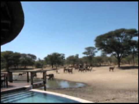 Executive Safari Consultants - Bushmanland