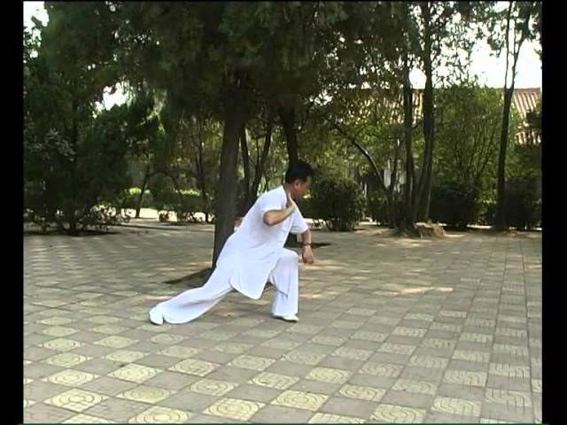 Zheng Xudong - Tai Chi style Chen Laojia [陈氏太极拳老架 Taijiquan style Chen]
