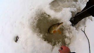 Жерлицы на щуку Рыбалка в марте