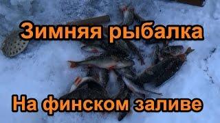 Зимняя рыбалка на финском заливе у парка 300-летия СПб.