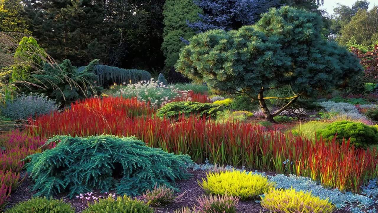 Ornamental Grass Garden Designs - YouTube